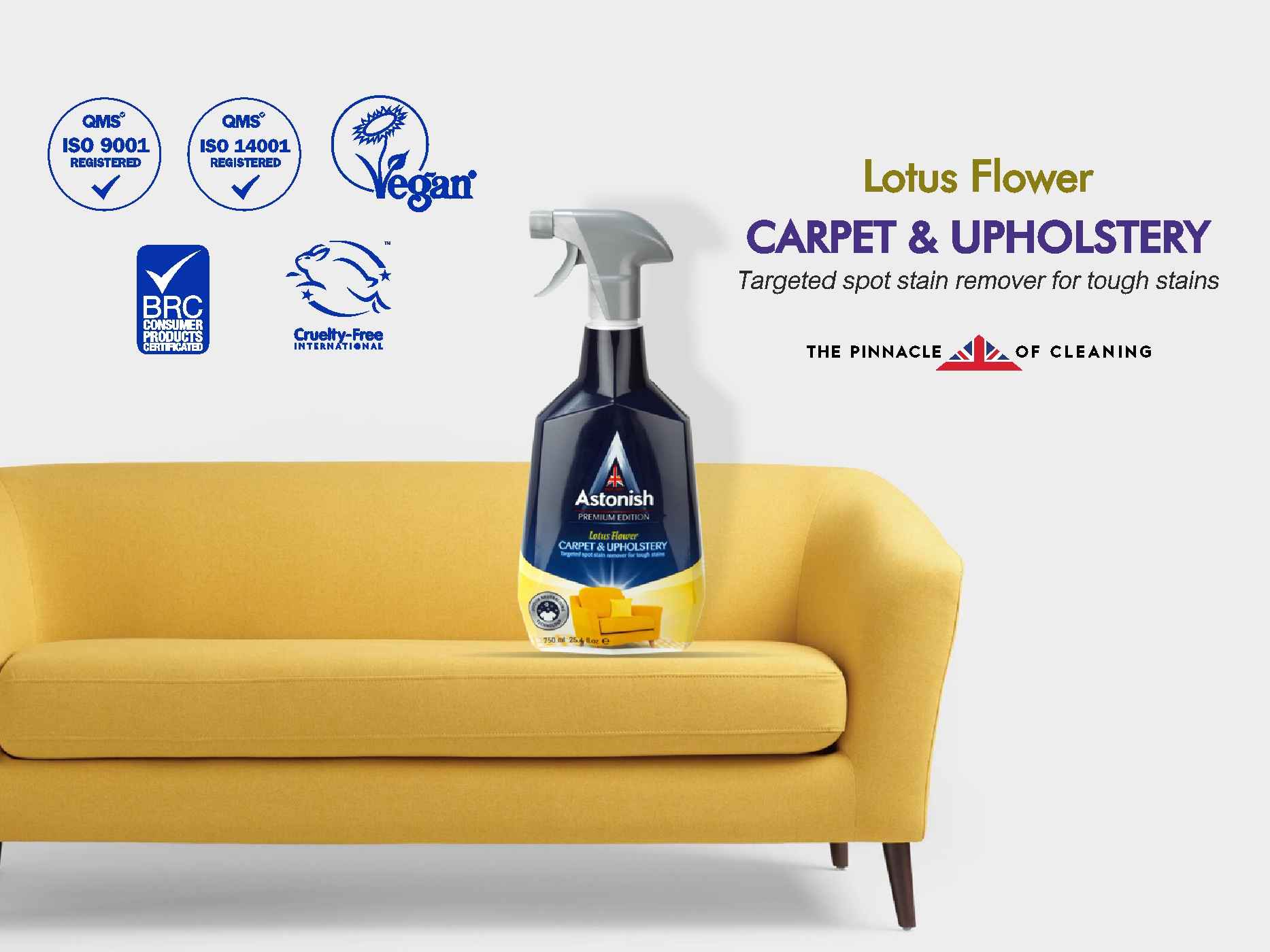 Astonish Carpet Upholstery Cleaner 750 Ml Big Impex Website