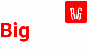 Big Impex Website